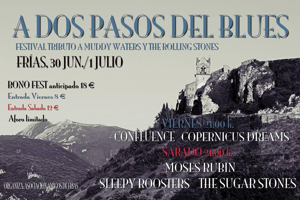 Festival tributo a Muddy Waters y The Rolling Stones en Frías - A dos pasos del blues 2