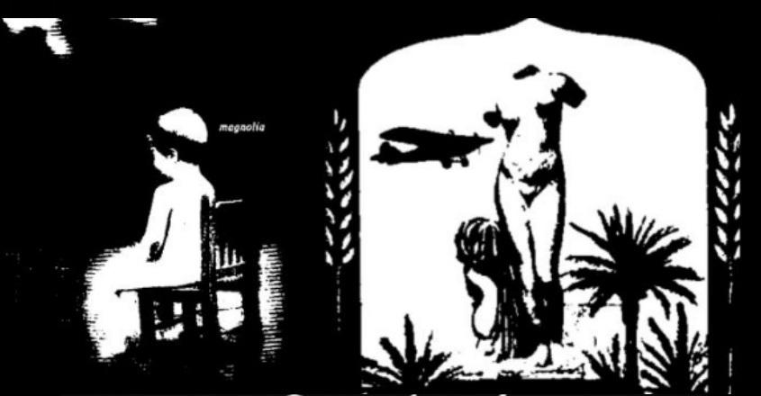 Magnolia y The Golden Age. 25 aniversario. Podcast de Melodías Cósmicas.